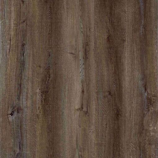 Picture of White Oak Semi-Figured Cashmere - Sample